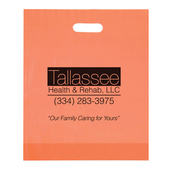 "Frosted Die Cut Plastic Bag (12""x15""x3"") - Foil Stamp"