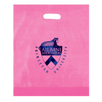 "Frosted Die Cut Plastic Bag (15""x18""x4"") - Foil Stamp"